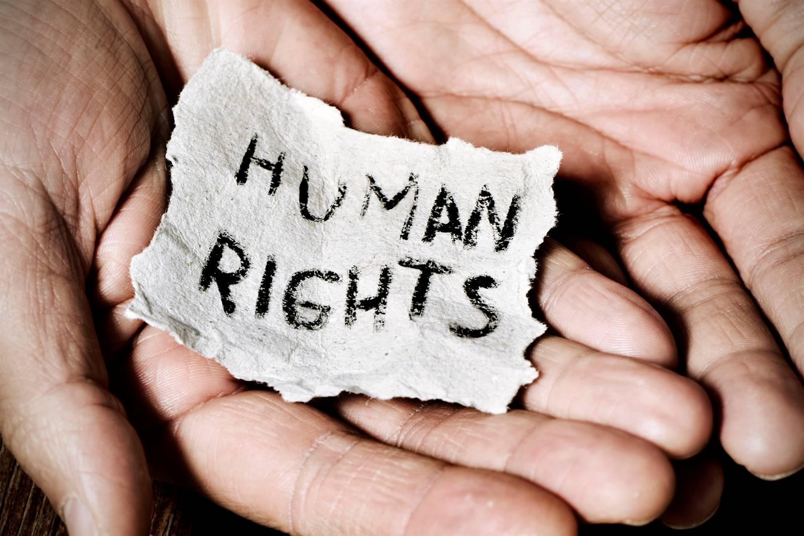 Essay Example Of Human Rights