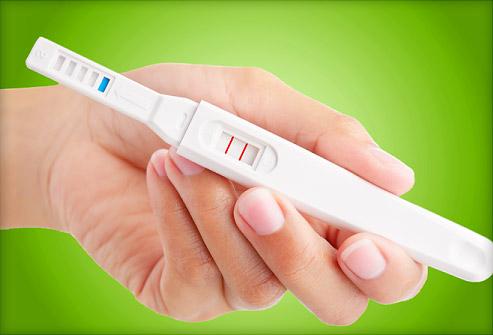 Example Of Pregnancy Essay