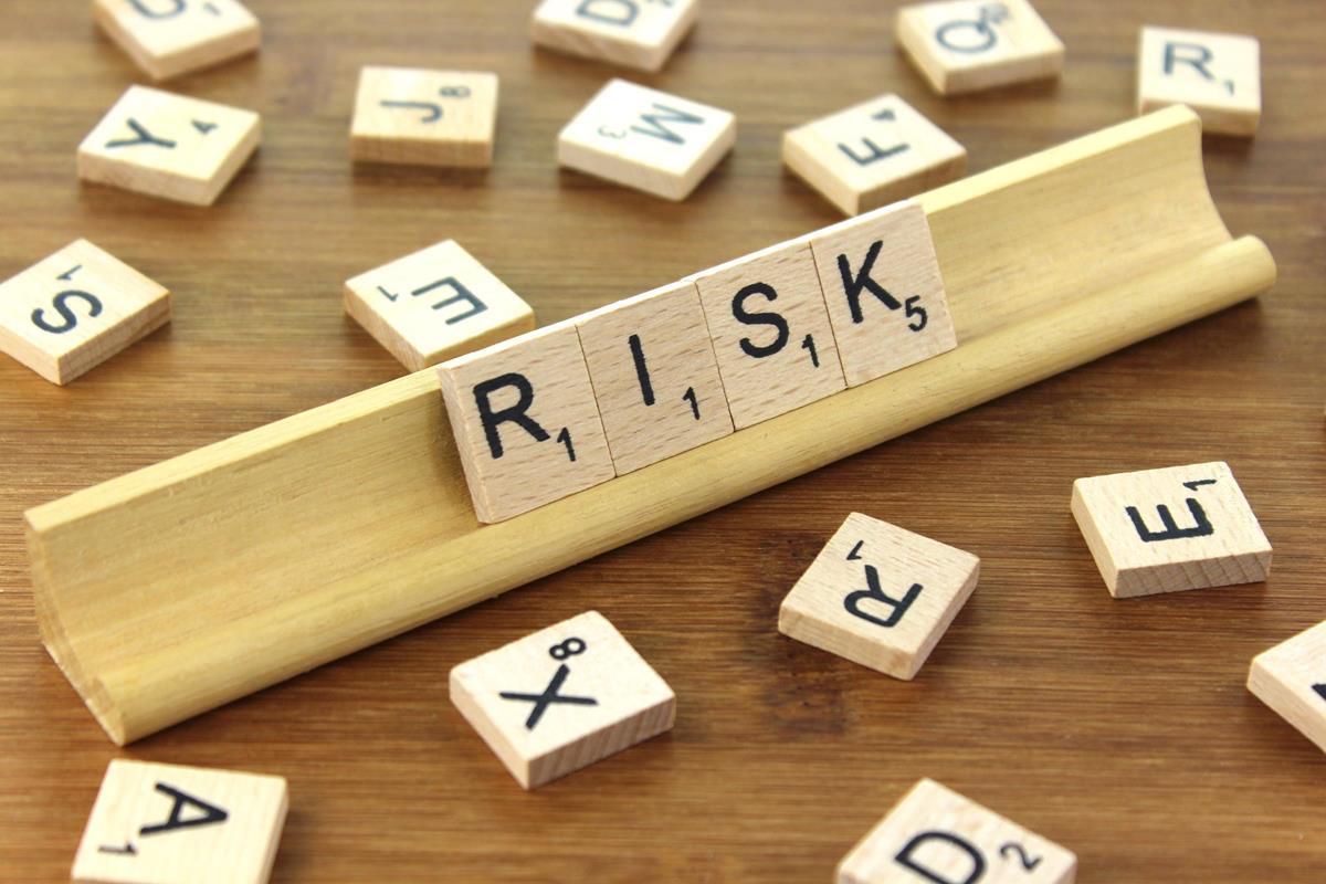 Risk Essay Example
